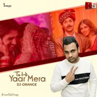 Tu Hi Yaar Mera (Remix) Dj Orange