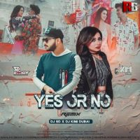 Yes Or No (Remix) Dj Kimi Dubai x Dj SD
